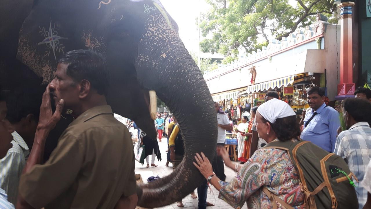 el-elefante-de-ganesha